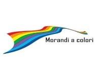 Centro Culturale Giorgio Morandi